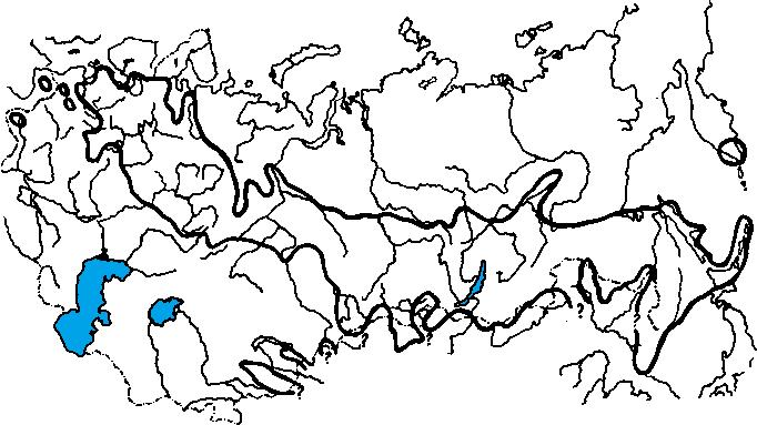 Ареал таежного клеща Ixodes persulcatus